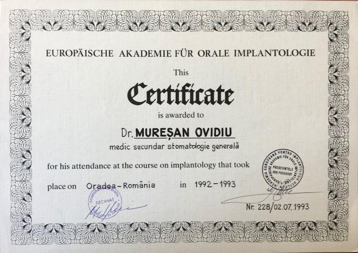 D13-Acad-Eur-Impl-1992-e1535372388178